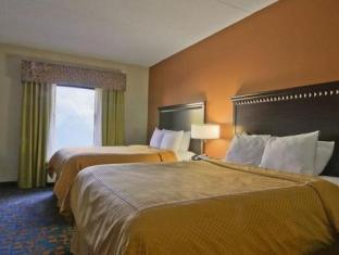 Comfort Suites Knoxville Knoxville (TN) - Guest Room