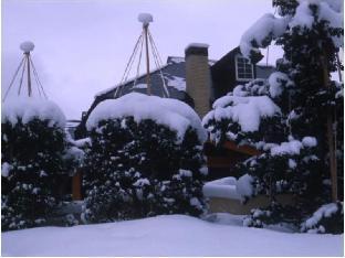 Yuyado White Bell image