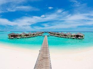 Paradise Island Resort & Spa PayPal Hotel Maldives Islands