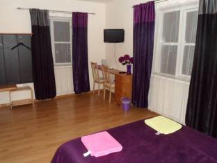 Stansted Airport Lodge London - Guest Room