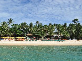 Reviews Coconut Beach Resort