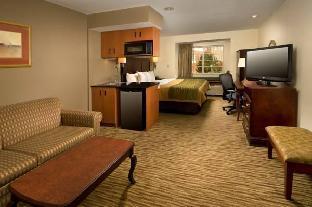 Comfort Inn & Suites Airport Dulles-Gateway