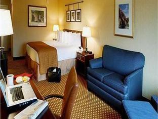 Holiday Inn San Antonio-Downtown/Market Square