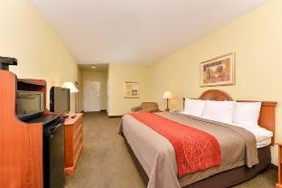 Comfort Inn Marrero - New Orleans West