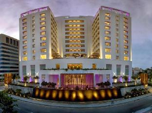 ザ レインツリー ホテル アナサライ