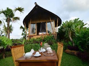 Padi Bali Eco Villas