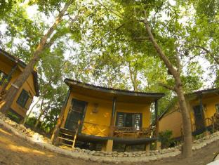 Maruni Sanctuary Lodge Chitwan National Park - Cottage Room & Canopy