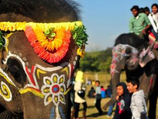 Maruni Sanctuary Lodge Chitwan National Park - Elephant Festival