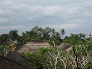 戴萨科普图普特拉普特拉民宿酒店 巴厘岛 - 景观