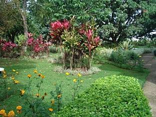 hotels.com Airport Hotel Costa Rica