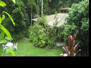 Review Daintree Deep Forest Lodge Daintree AU