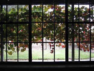 Review Under the Vines Bed & Breakfast Barossa Valley AU