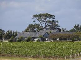 Takatu Lodge & Vineyard Matakana