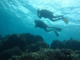 Dive Thru Scuba Resort Bohol - Sports and Activities