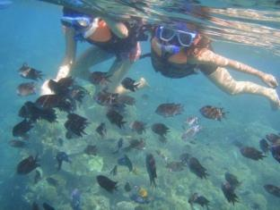 Luca's Cucina Italiana & Lodge Puerto Galera - Activities:Snorkeling