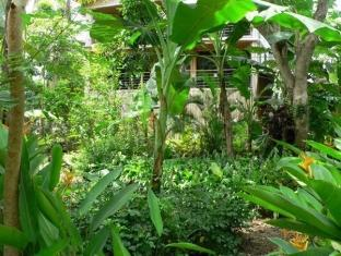 Isle of View Beach Resort And Guesthouse Bohol - Garden