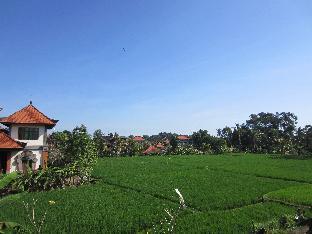 Jalan. Hanoman No. 43, Padang Tegal