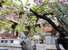 Zen Garden Hotel Wuyi Yard, Lijiang