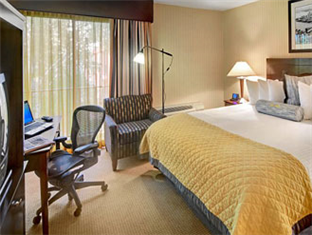 Wyndham Garden Hotel- Newark Airport Newark (NJ) - King Room