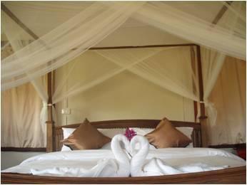 Ban Chomna Resort,บ้านชมนา รีสอร์ท
