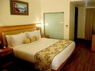 Hotel Anneha New Delhi and NCR - Superior Room