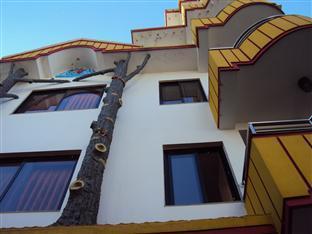 Hotel Tree House Kathmandu - Interno dell'Hotel