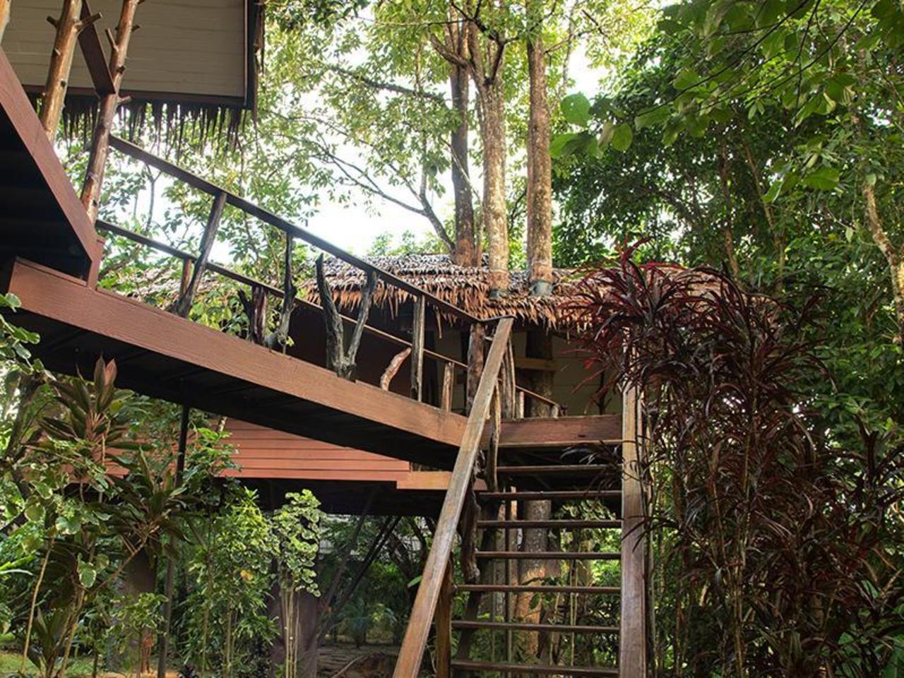 เขาสก พาราไดซ์ รีสอร์ท (Khao Sok Paradise Resort)