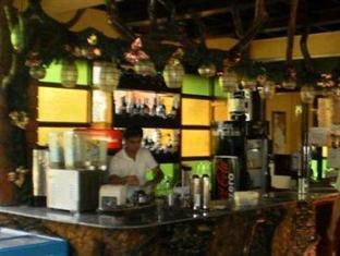 Leslie's Palawan Tropical Hotel, Resort and Restaurant Puerto Princesa City - Bar