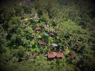 DD Ubud Jungle Villa