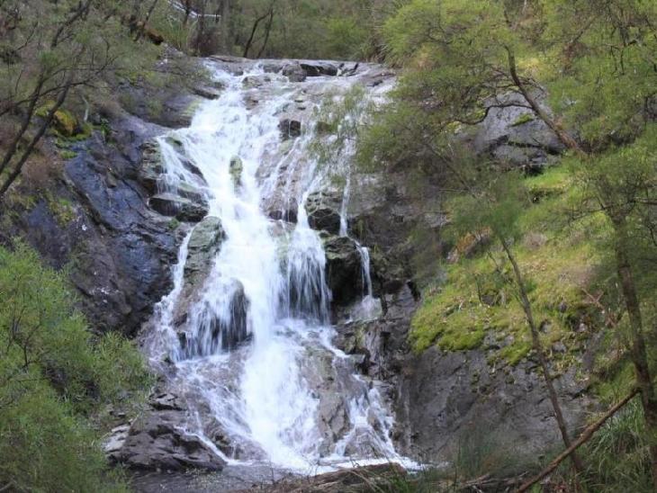 Karri Valley Chalets photo 3