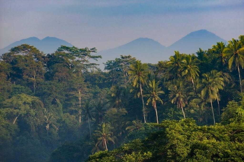 Bukit Naga Estate