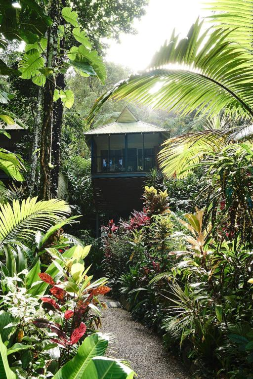 Daintree Eco Lodge & Spa Hotel PayPal Hotel Daintree