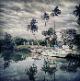 Негомбо - The Kings Island Resort