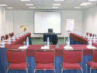 Plaza Florencia Hotel Mexico City - Meeting Room