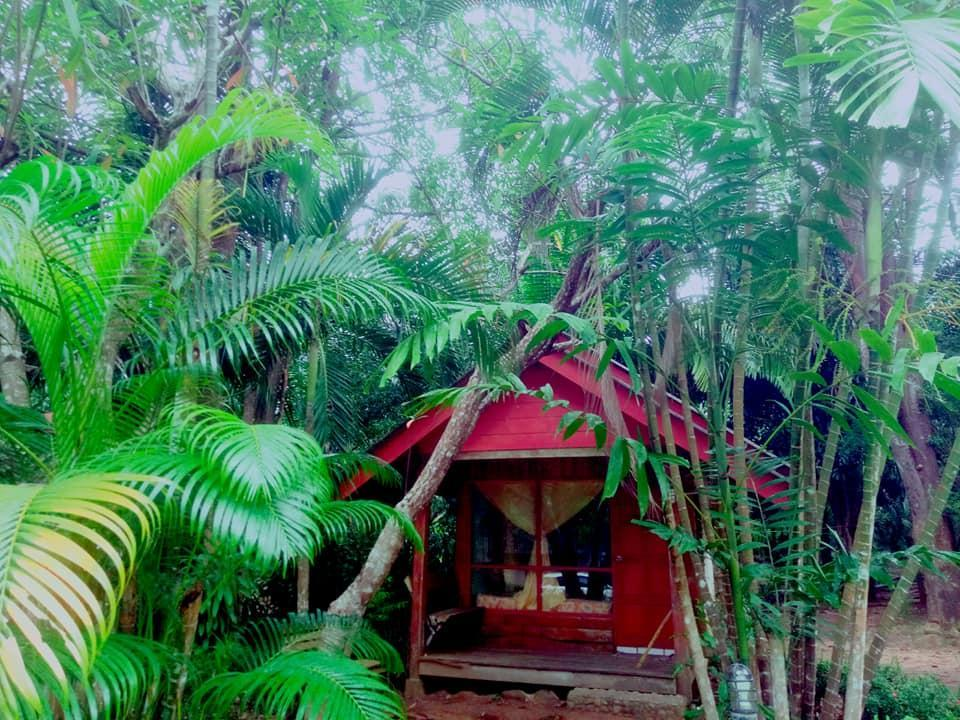 Khaolak Mountain View Bungalows **Fan room