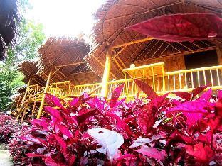 ピ ピ ヒル バンブー バンガロー Phi Phi Hill Bamboo Bungalow