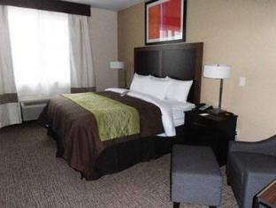 Best PayPal Hotel in ➦ Eagle Pass (TX): Quality Inn & Suites Eagle Pass