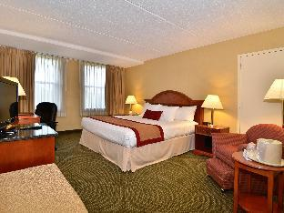Best PayPal Hotel in ➦ Elkridge (MD): Comfort Suites Columbia Gateway