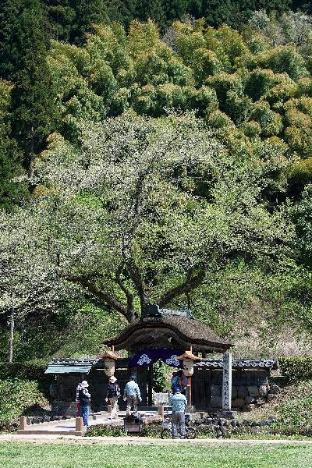 Dormy Inn Fukui Natural Hot Springs image