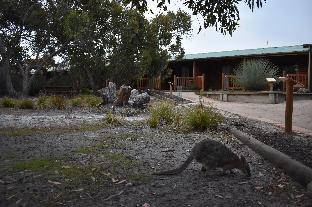 Kangaroo Island Wilderness Retreat Resort4