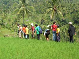 Rambutan Lovina Hotel Bali - Ympäristö