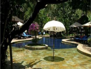 Rambutan Lovina Hotel Bali - Bazen