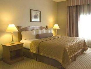 Best PayPal Hotel in ➦ Mcallen (TX): Hampton Inn & Suites Mcallen