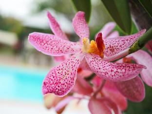 booking Kanchanaburi Kanvela Resort hotel