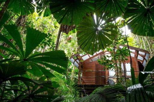 book Cape Tribulation hotels in Queensland without creditcard