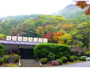 龍泉洞溫泉飯店 image