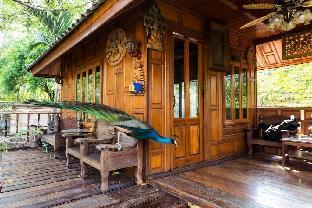 Thai Woodhouse - Peacock Room