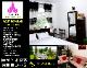 Нувара-Элия - Lotus Luxury Apartment