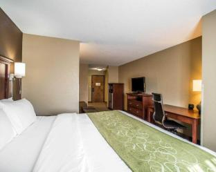 Фото отеля Comfort Suites Columbia - University Area