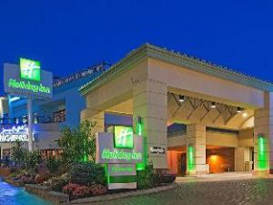 尼亚加拉瀑布假日酒店 (Holiday Inn Niagara Falls-By the Falls)